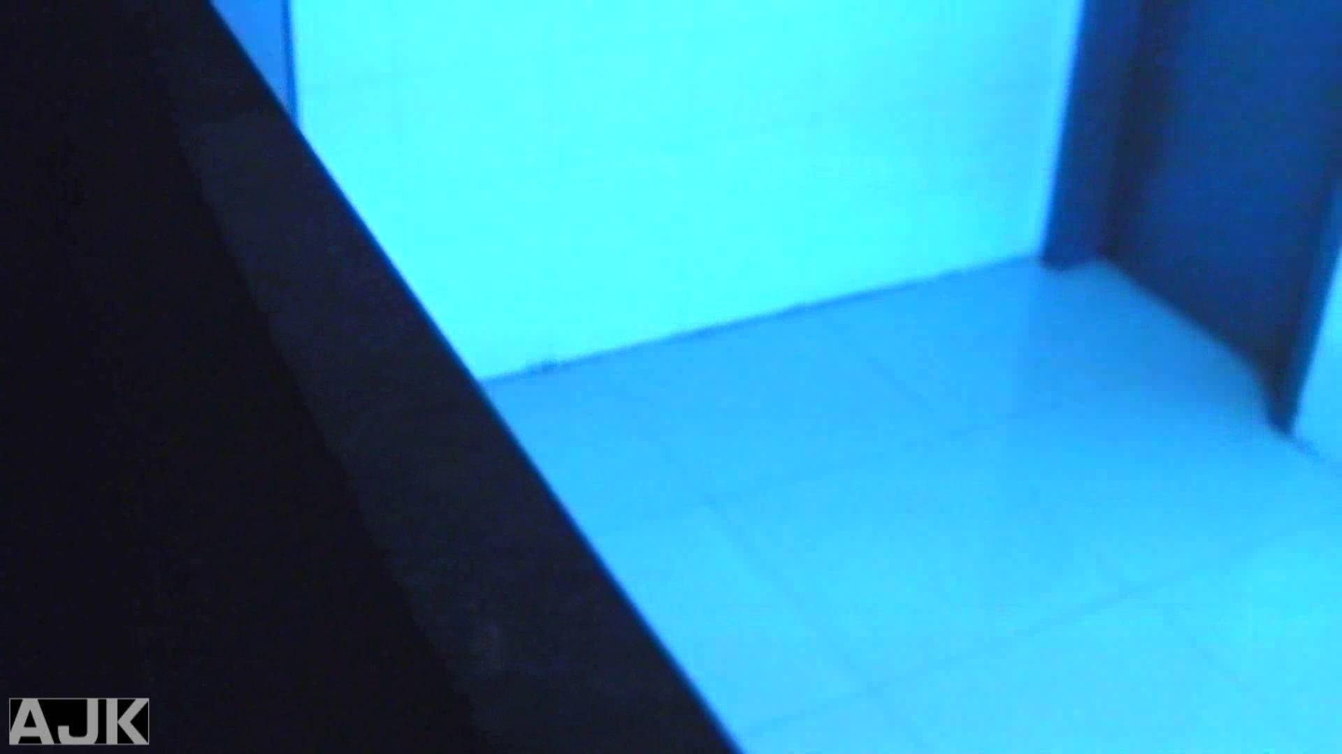 盗撮おまんこ|隣国上階級エリアの令嬢たちが集うデパートお手洗い Vol.13|怪盗ジョーカー
