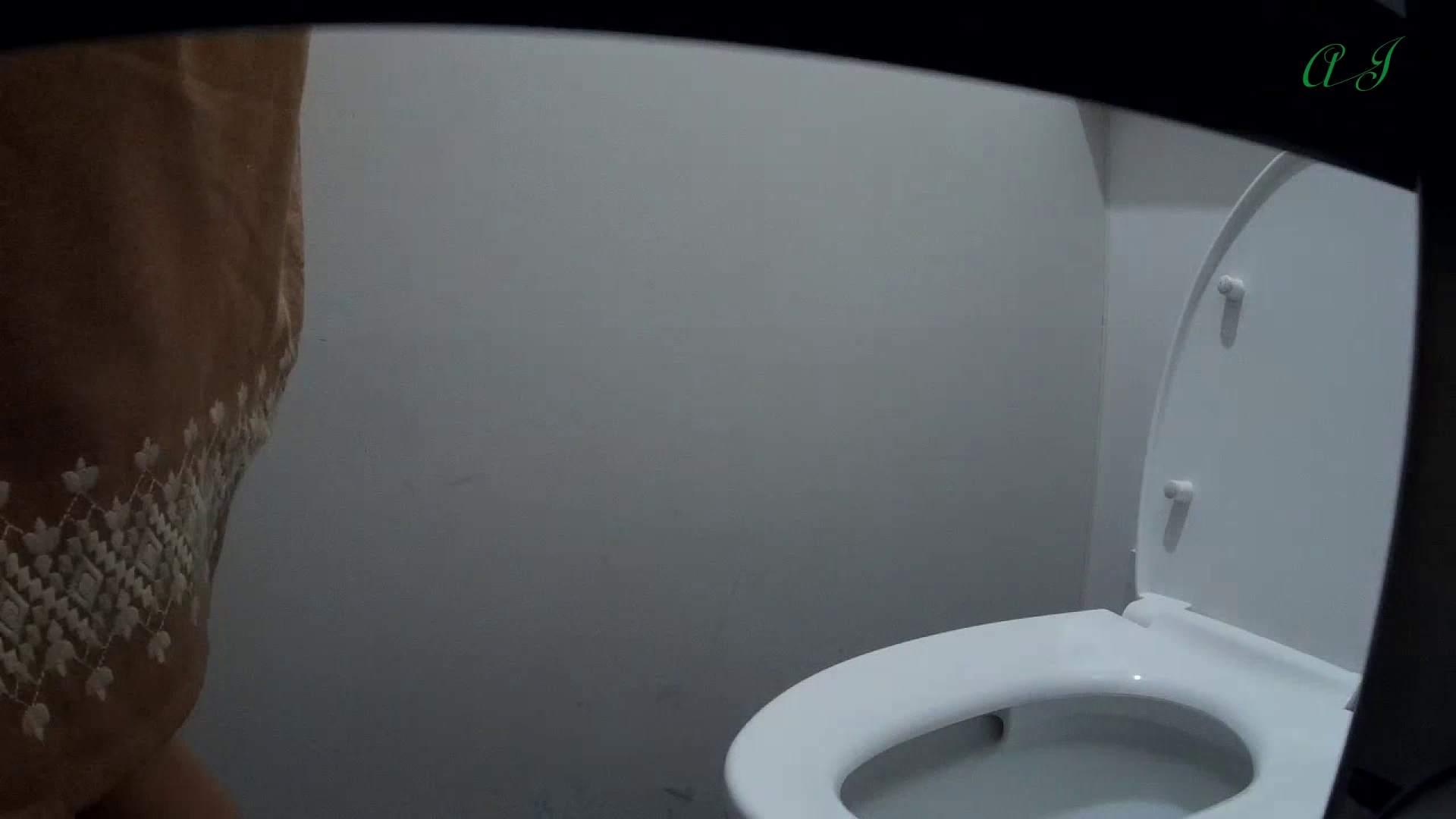 ▲2017_29位▲ 【35位 2016】有名大学女性洗面所 vol.63 OL | 洗面所着替え  85連発 63