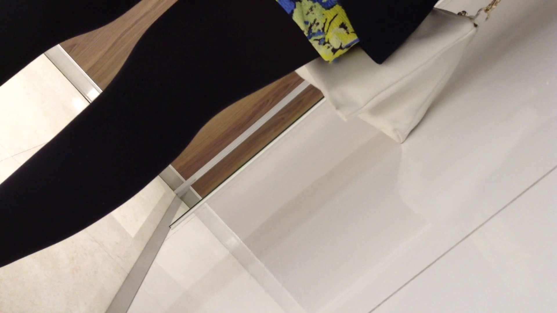 女子洗面所行列潜入記 Vol.05 潜入エロ調査   美女達のヌード  92連発 88
