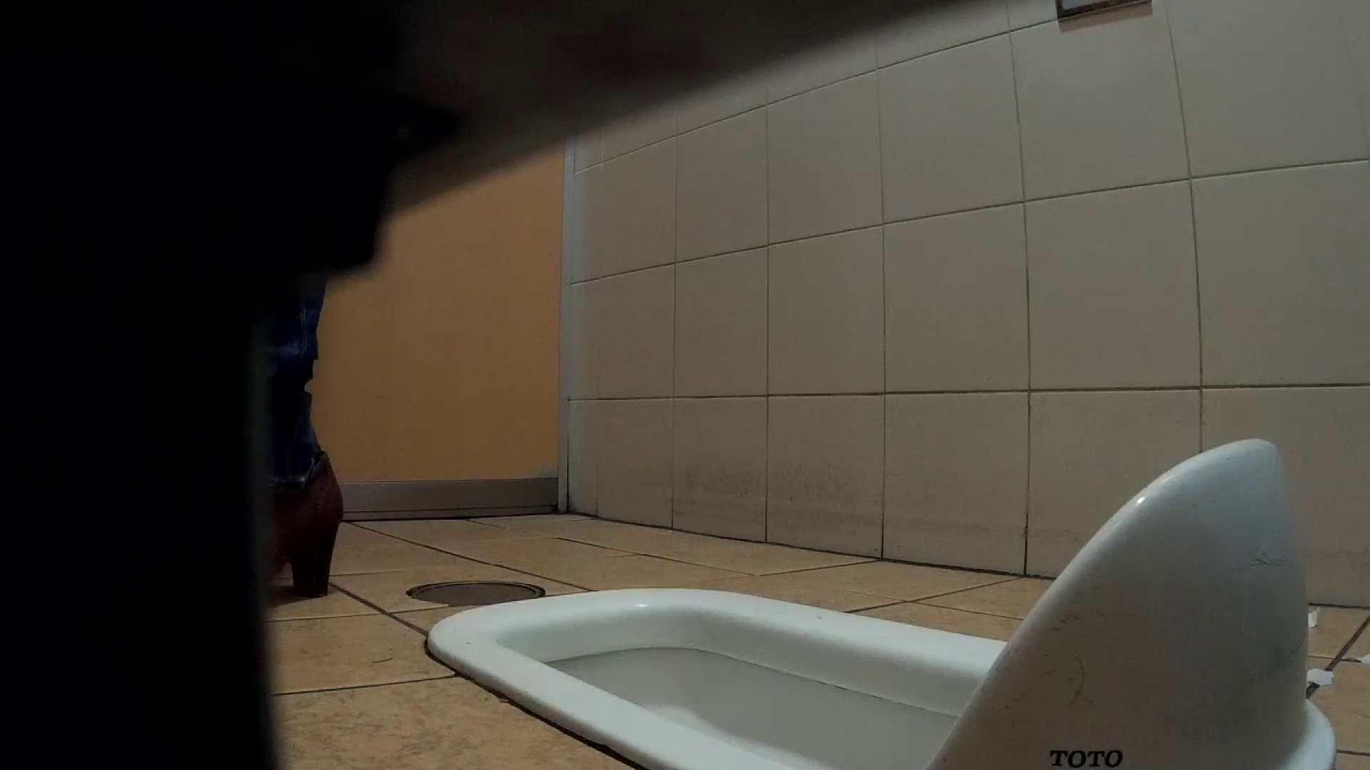 痴態洗面所 Vol.11 高貴なおねぇたんがたっぷり!! 洗面所着替え | OL  37連発 10