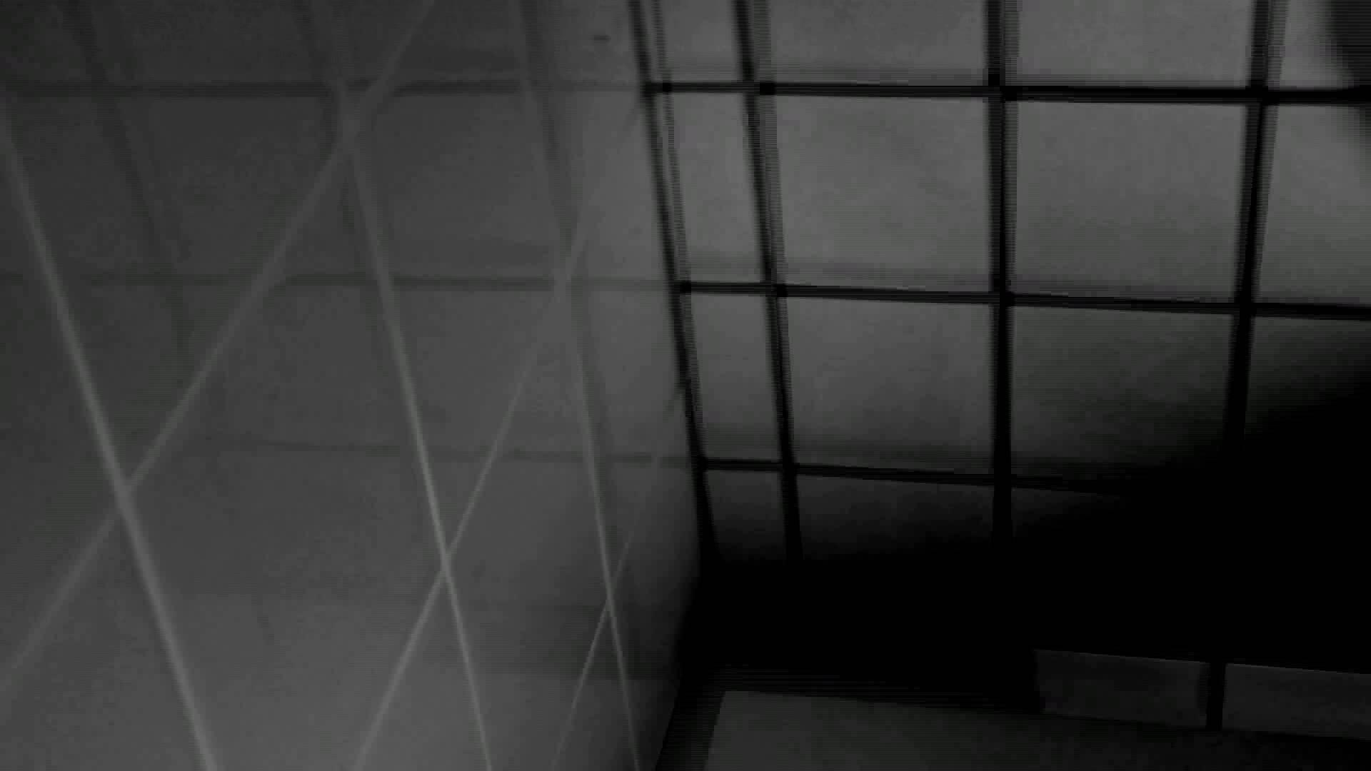 美しい日本の未来 特別版 軌跡2 盗撮エロすぎ   おまんこ無修正  76連発 49