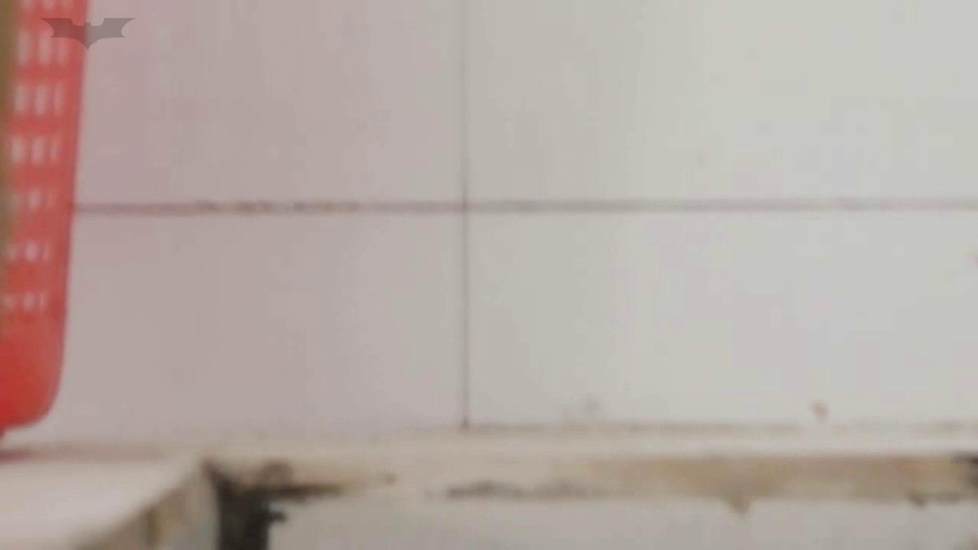 JD盗撮 美女の洗面所の秘密 Vol.19 美女達のヌード | トイレ中  27連発 23