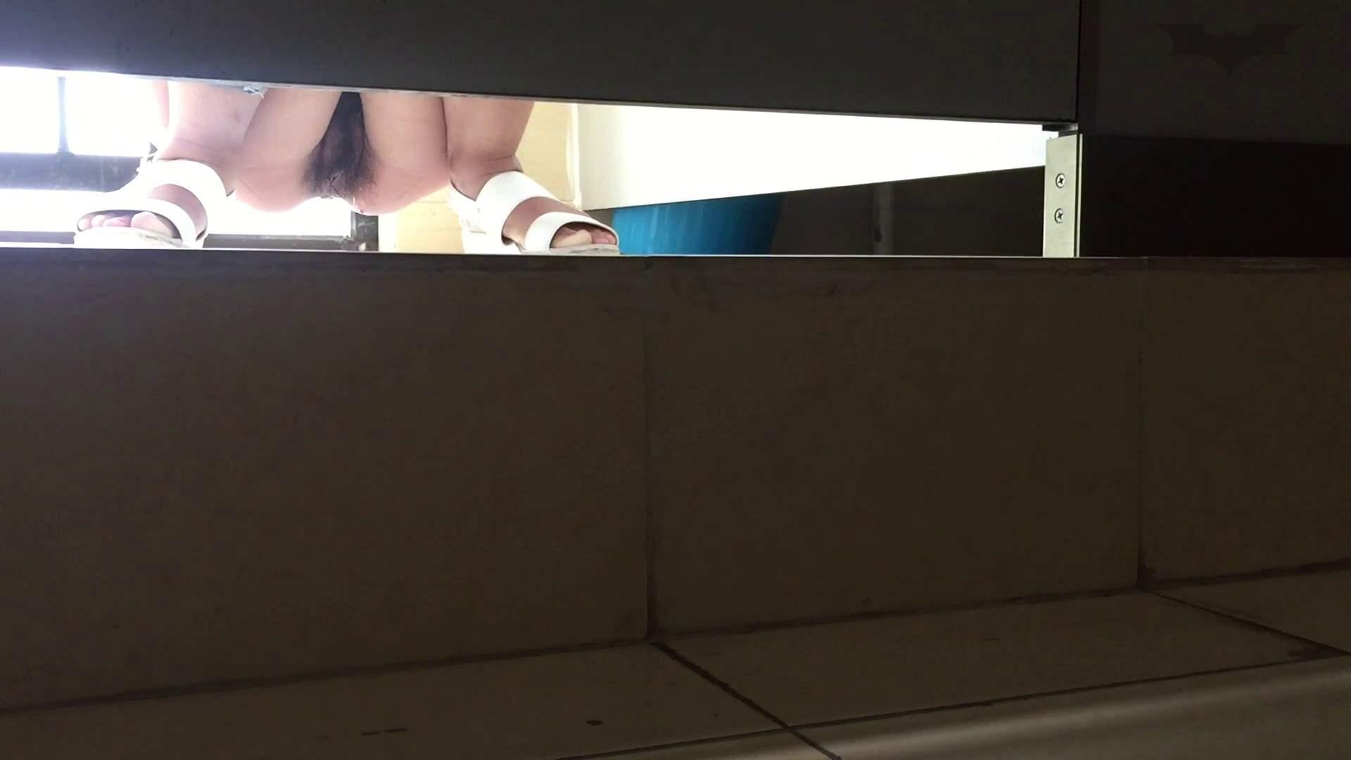 JD盗撮 美女の洗面所の秘密 Vol.66 盗撮エロすぎ | トイレ中  43連発 34