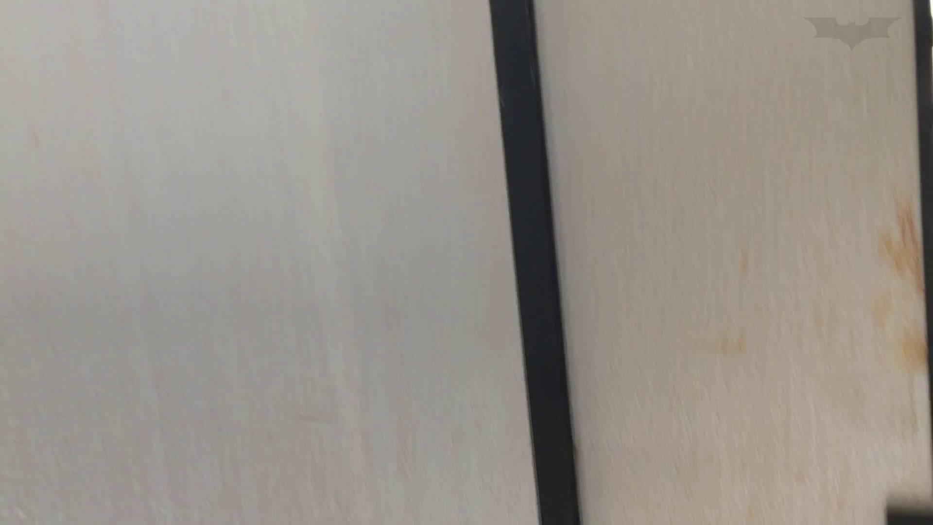 芸術大学ガチ潜入盗撮 JD盗撮 美女の洗面所の秘密 Vol.80 トイレ中 | 洗面所着替え  64連発 22