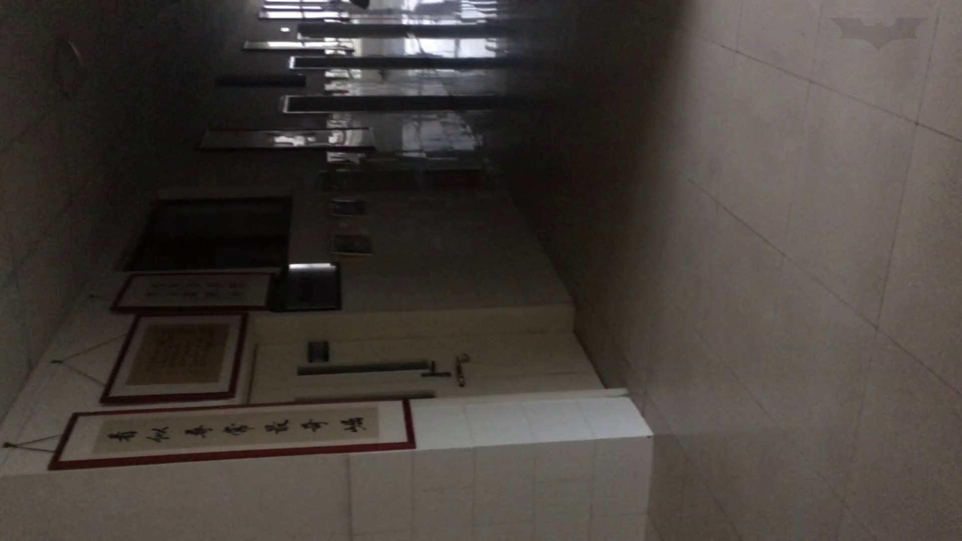 芸術大学ガチ潜入盗撮 JD盗撮 美女の洗面所の秘密 Vol.80 トイレ中 | 洗面所着替え  64連発 50