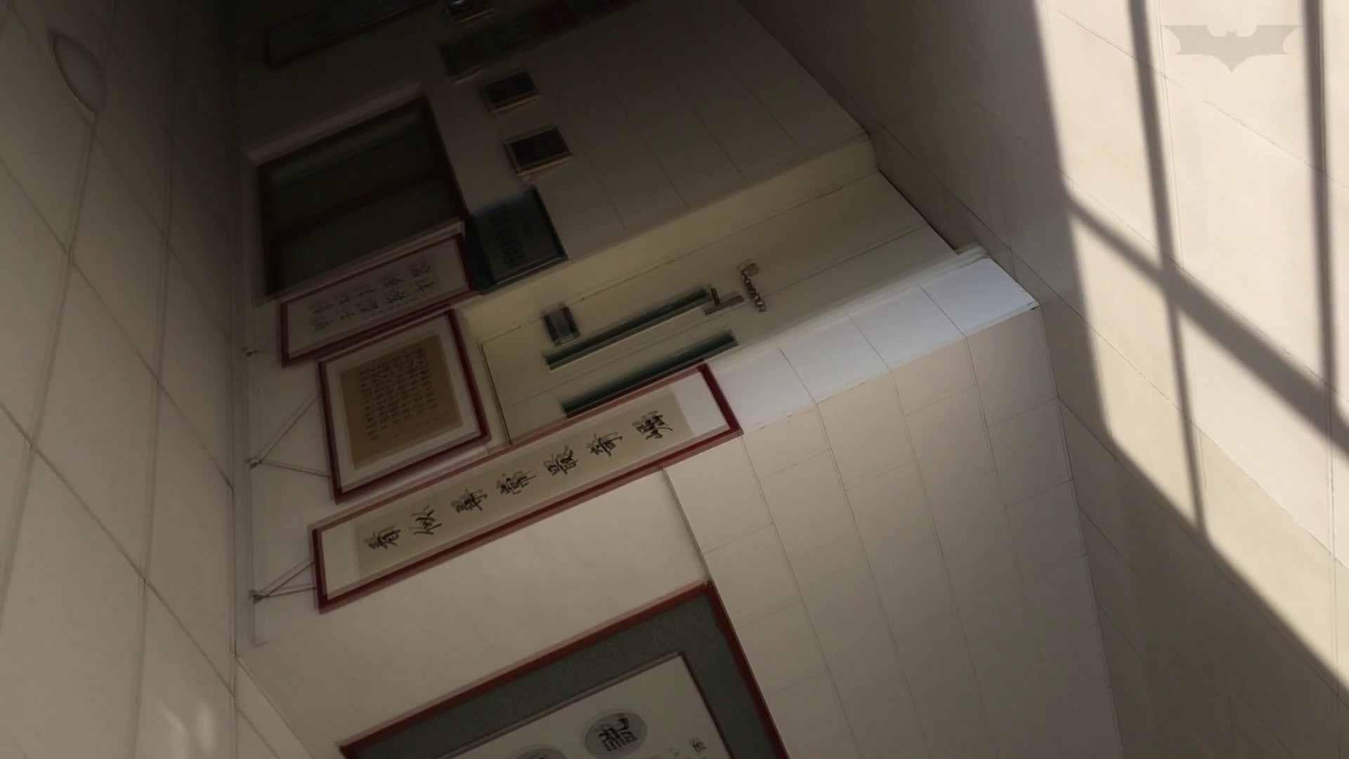 芸術大学ガチ潜入盗撮 JD盗撮 美女の洗面所の秘密 Vol.91 洗面所着替え | トイレ中  48連発 12