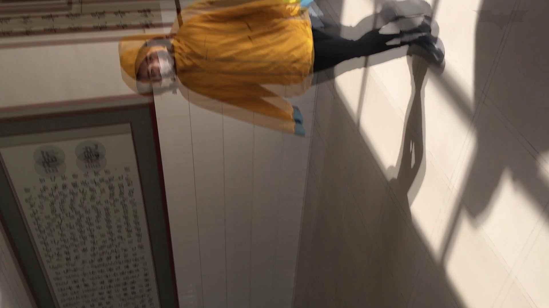 芸術大学ガチ潜入盗撮 JD盗撮 美女の洗面所の秘密 Vol.91 洗面所着替え | トイレ中  48連発 15