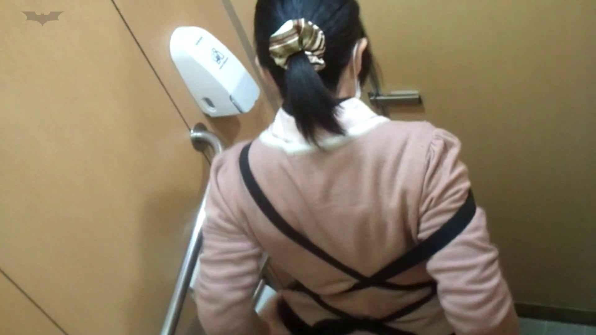 化粧室絵巻 商い場編 VOL.23 OL | 0  25連発 8