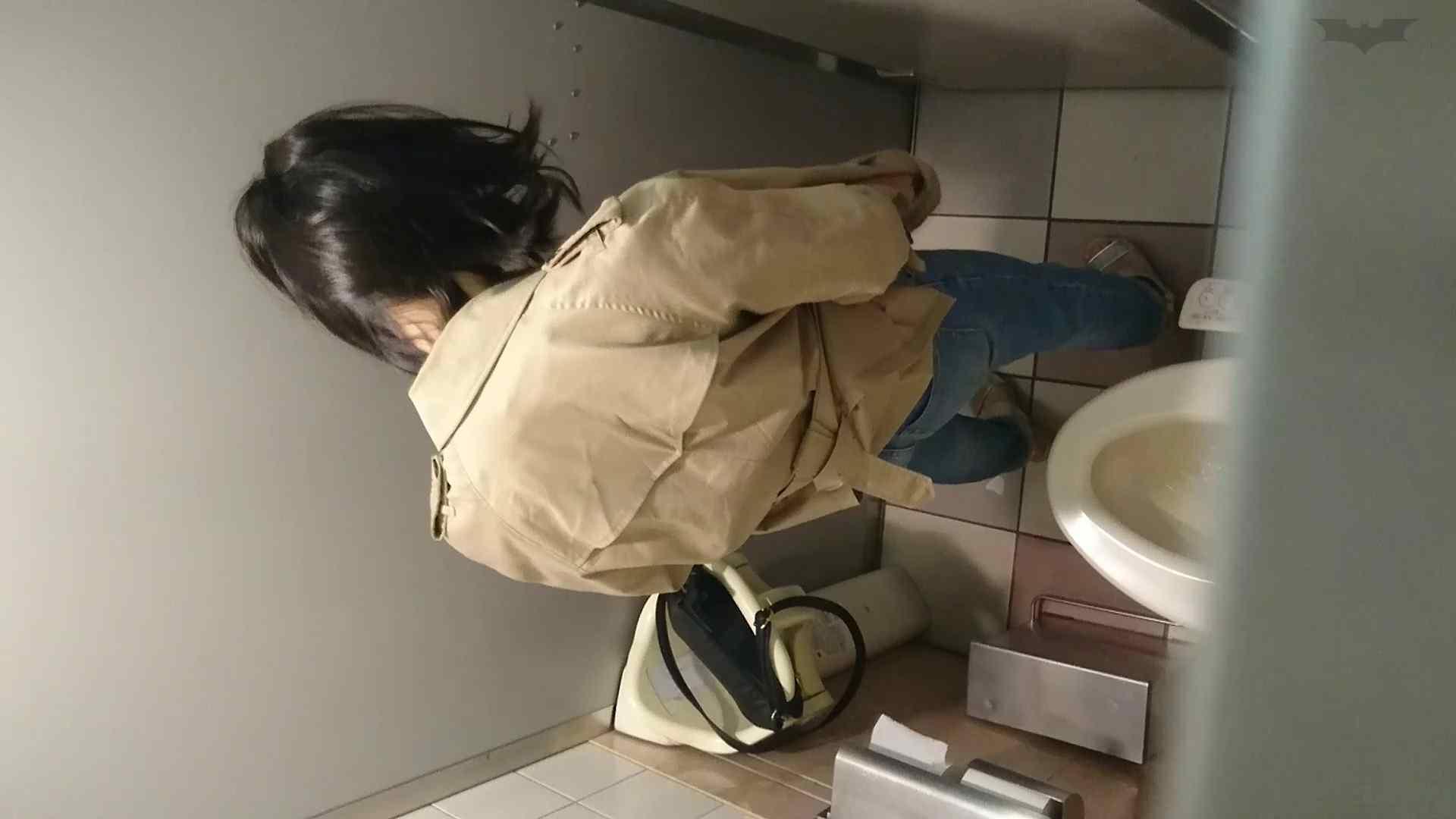化粧室絵巻 ショッピングモール編 VOL.22 OL | 0  79連発 14