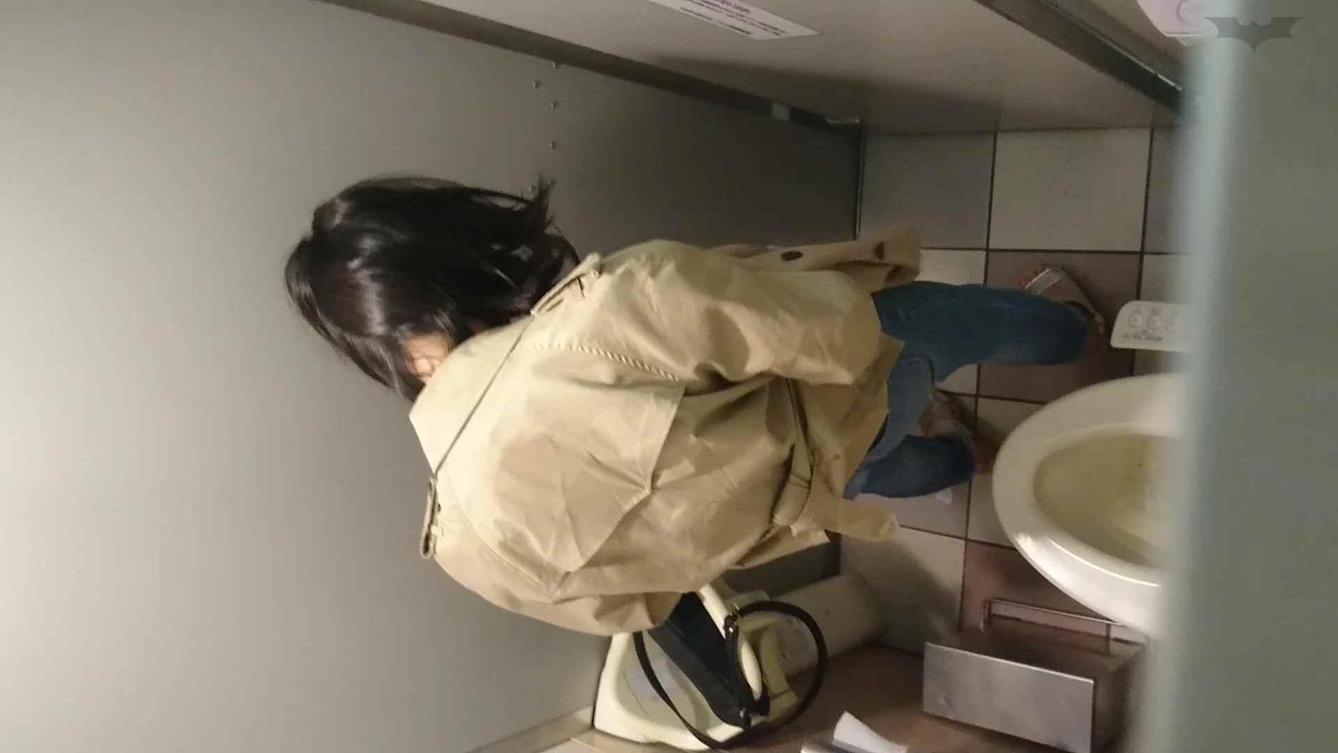化粧室絵巻 ショッピングモール編 VOL.22 OL | 0  79連発 15