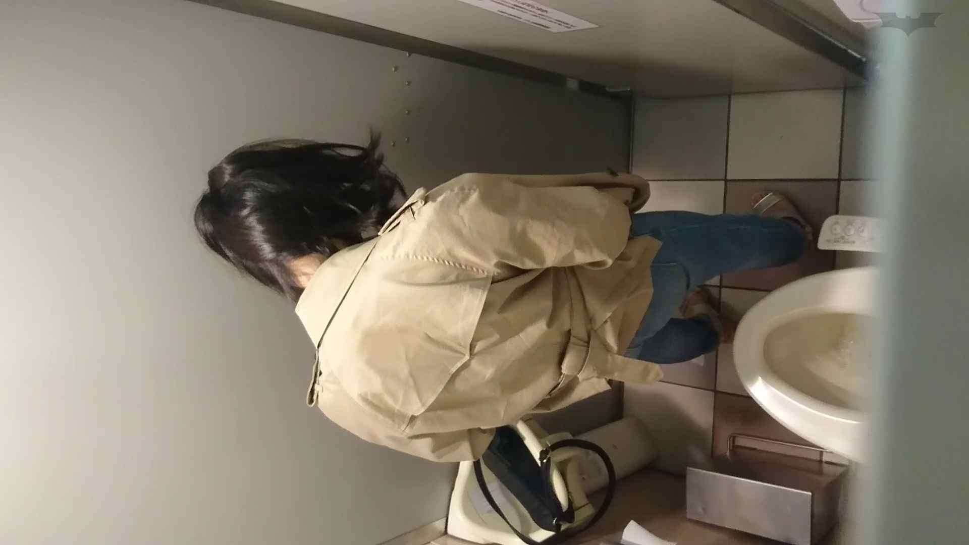 化粧室絵巻 ショッピングモール編 VOL.22 OL | 0  79連発 18