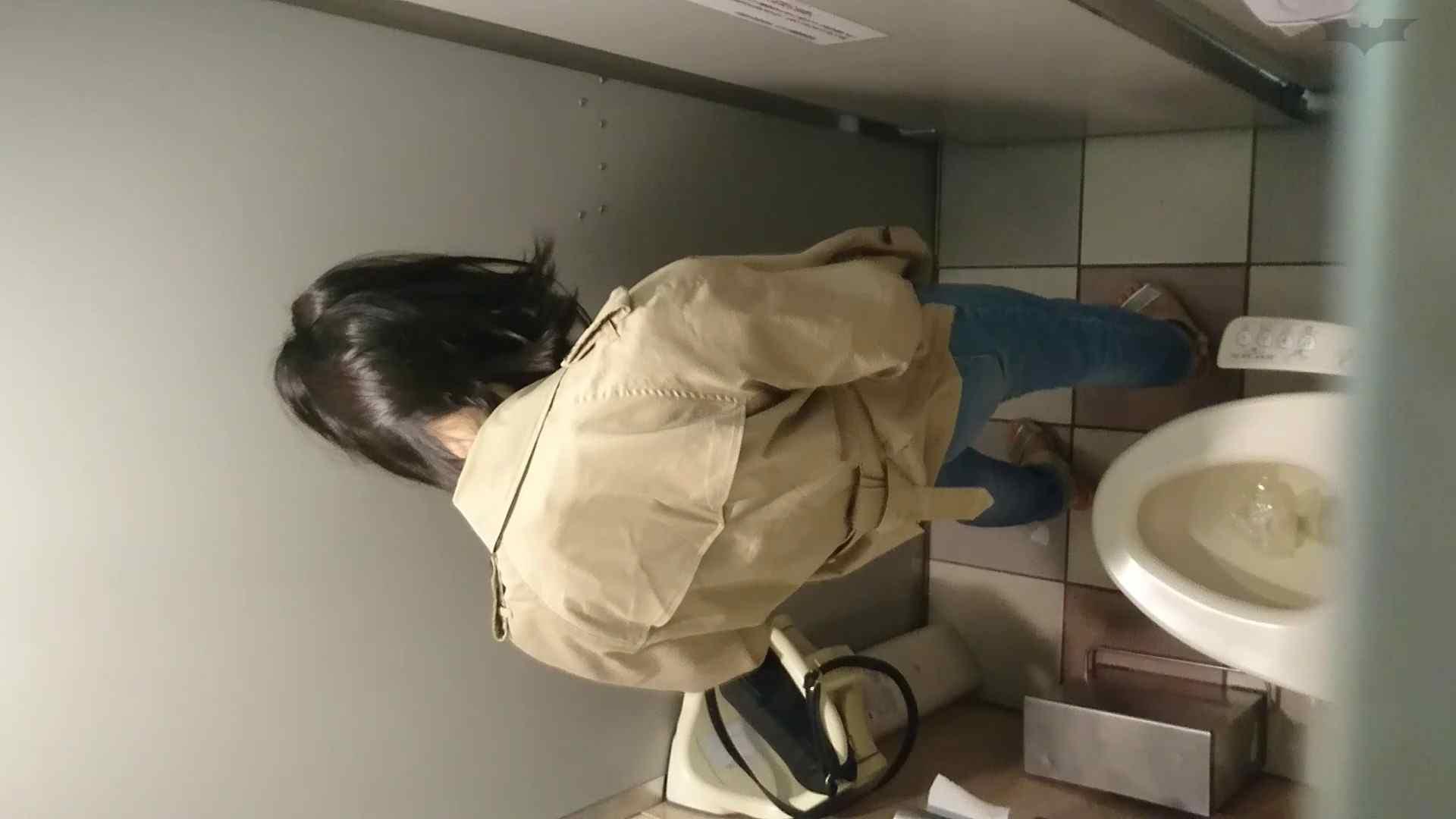 化粧室絵巻 ショッピングモール編 VOL.22 OL | 0  79連発 19