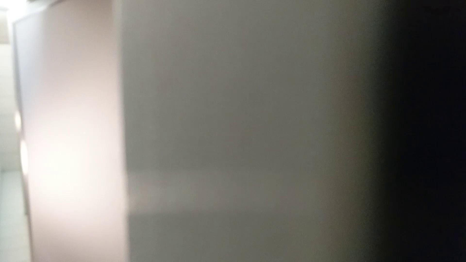 化粧室絵巻 ショッピングモール編 VOL.22 OL | 0  79連発 37