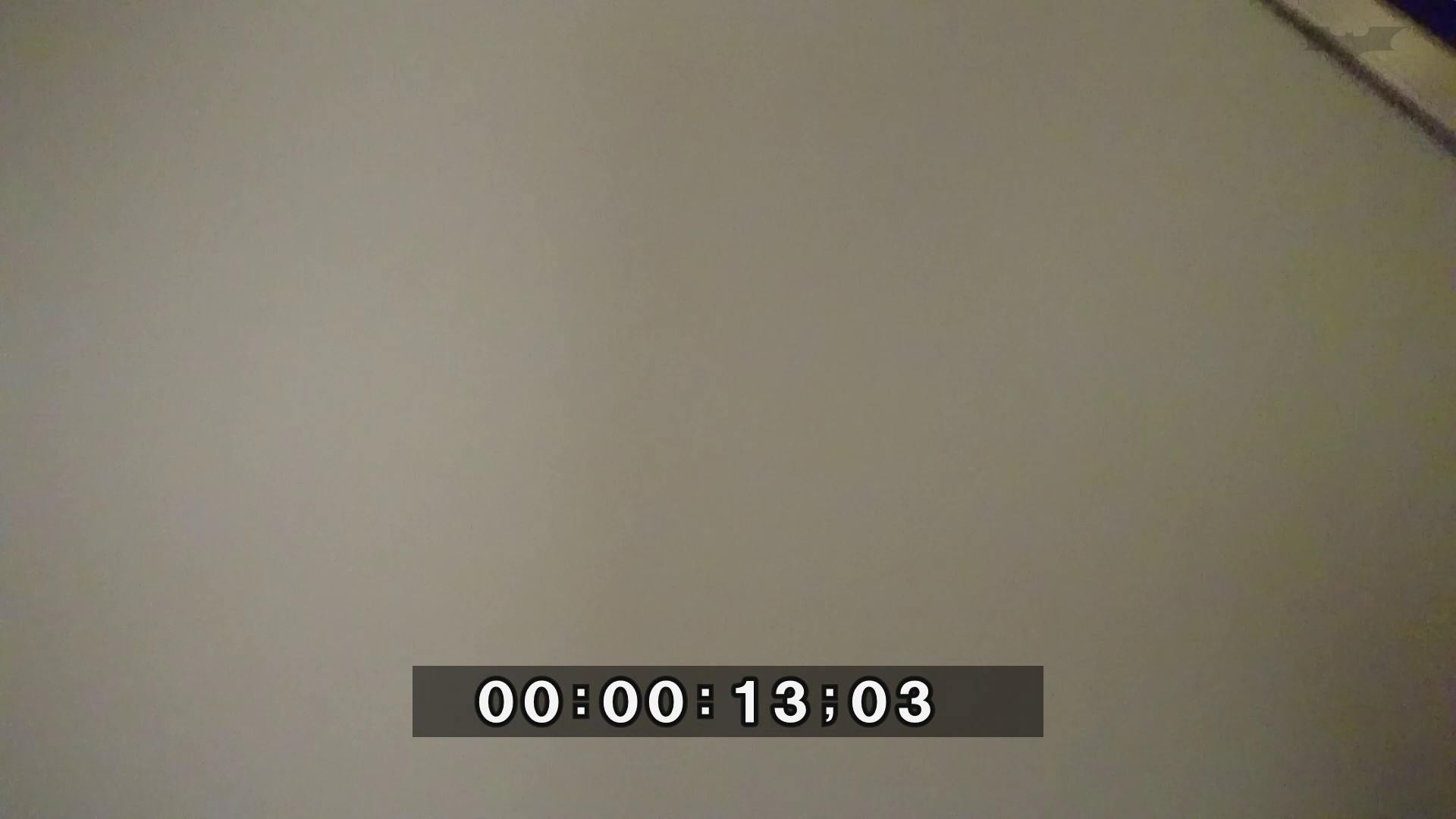 化粧室絵巻 ショッピングモール編 VOL.04 OL | 高画質  100連発 1