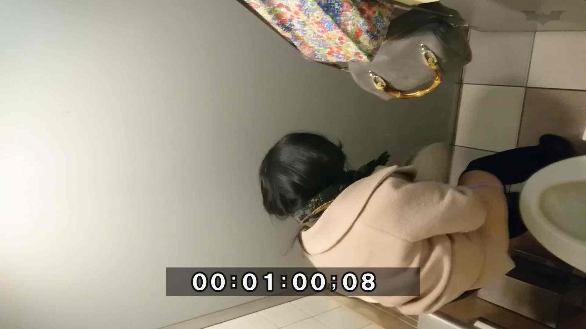 化粧室絵巻 ショッピングモール編 VOL.04 OL | 高画質  100連発 34