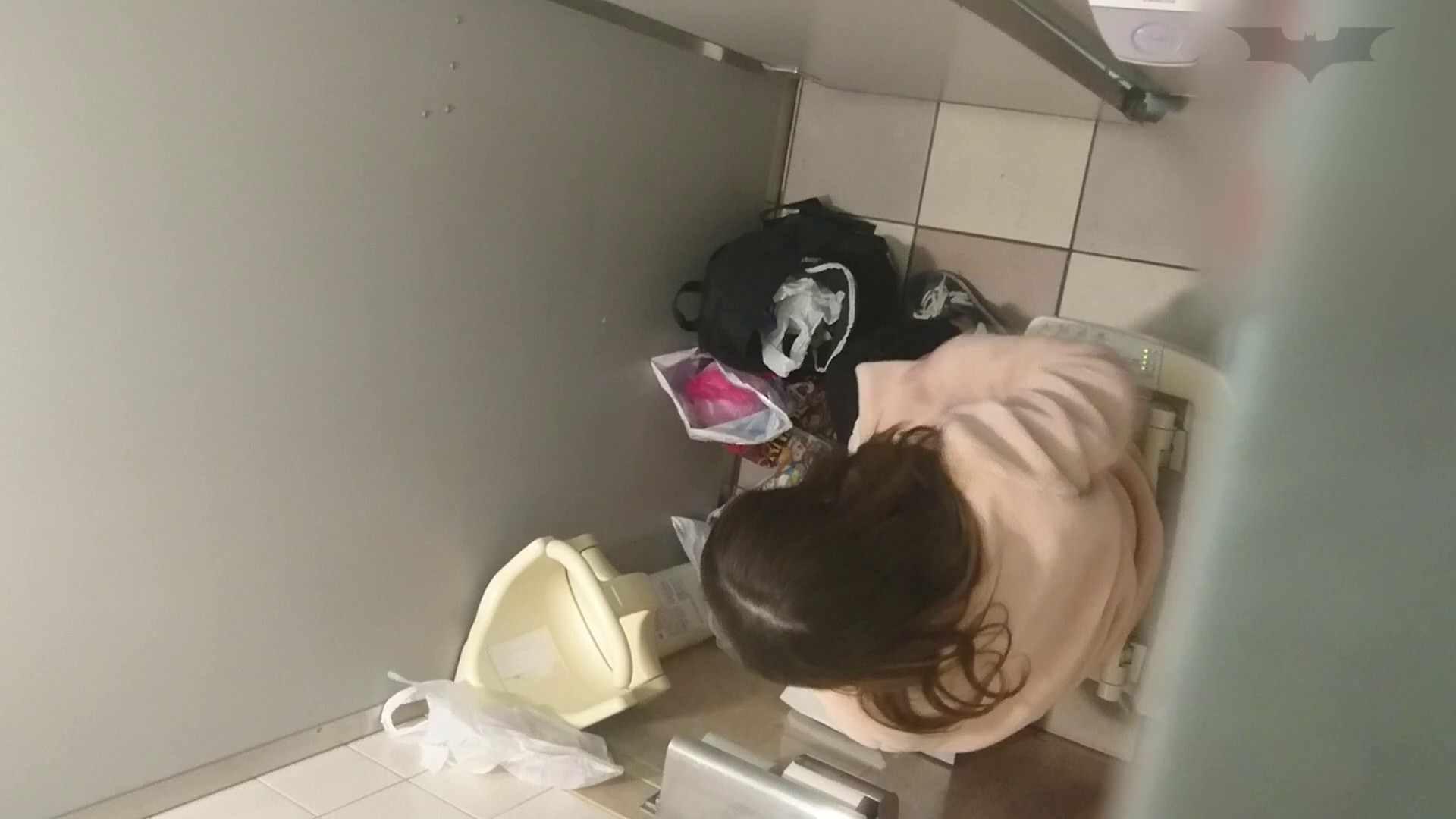 化粧室絵巻 ショッピングモール編 VOL.10 OL | 0  96連発 79