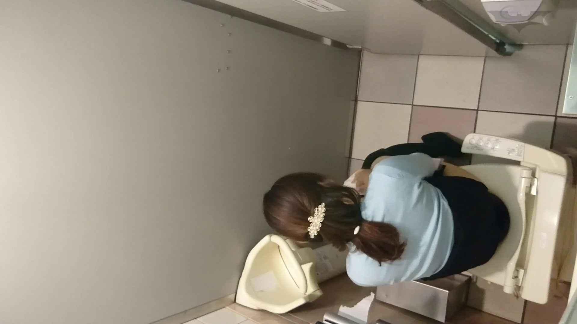 化粧室絵巻 ショッピングモール編 VOL.13 OL   0  68連発 34
