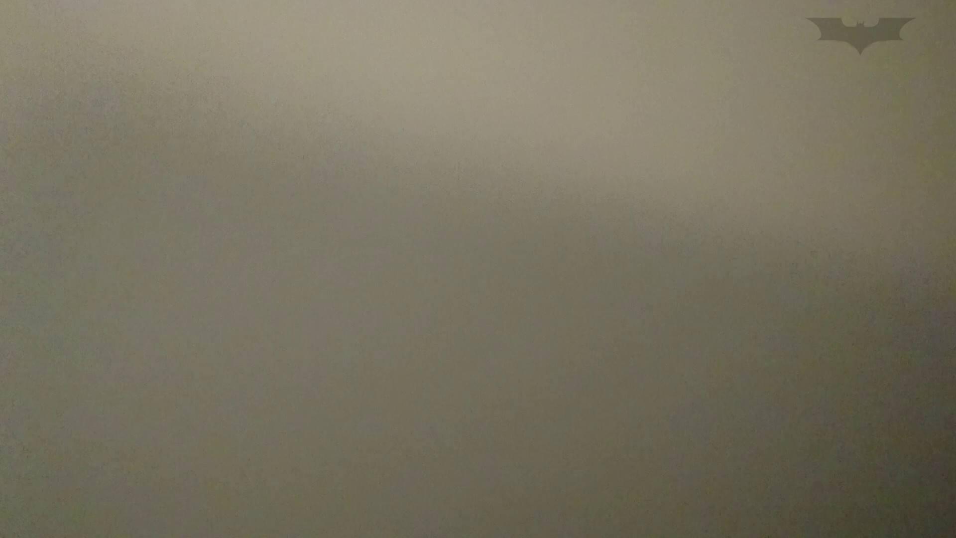 化粧室絵巻 ショッピングモール編 VOL.15 OL | 0  57連発 52