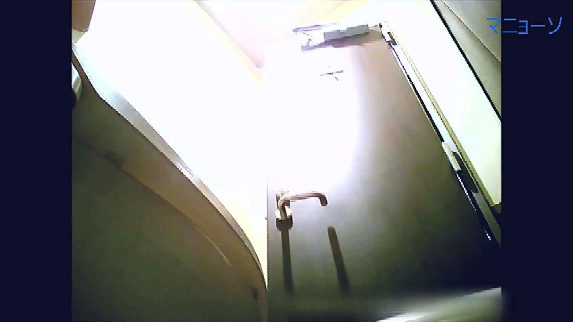 トイレでひと肌脱いでもらいました (OL編)Vol.08 OL   トイレ中  98連発 53