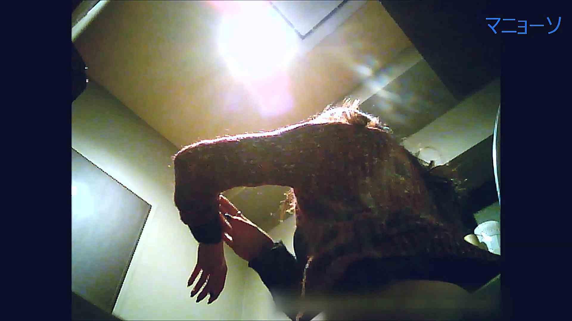 トイレでひと肌脱いでもらいました (OL編)Vol.13 OL | トイレ中  61連発 55