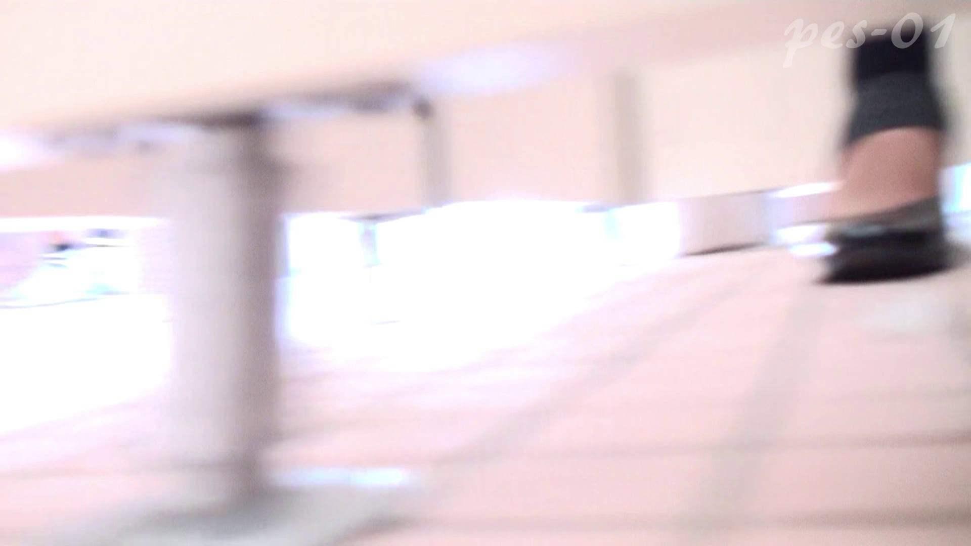 ※100個限定販売 至高下半身盗撮-プレミアム-【体育館編】VOL.1 OL | 体育館  65連発 18