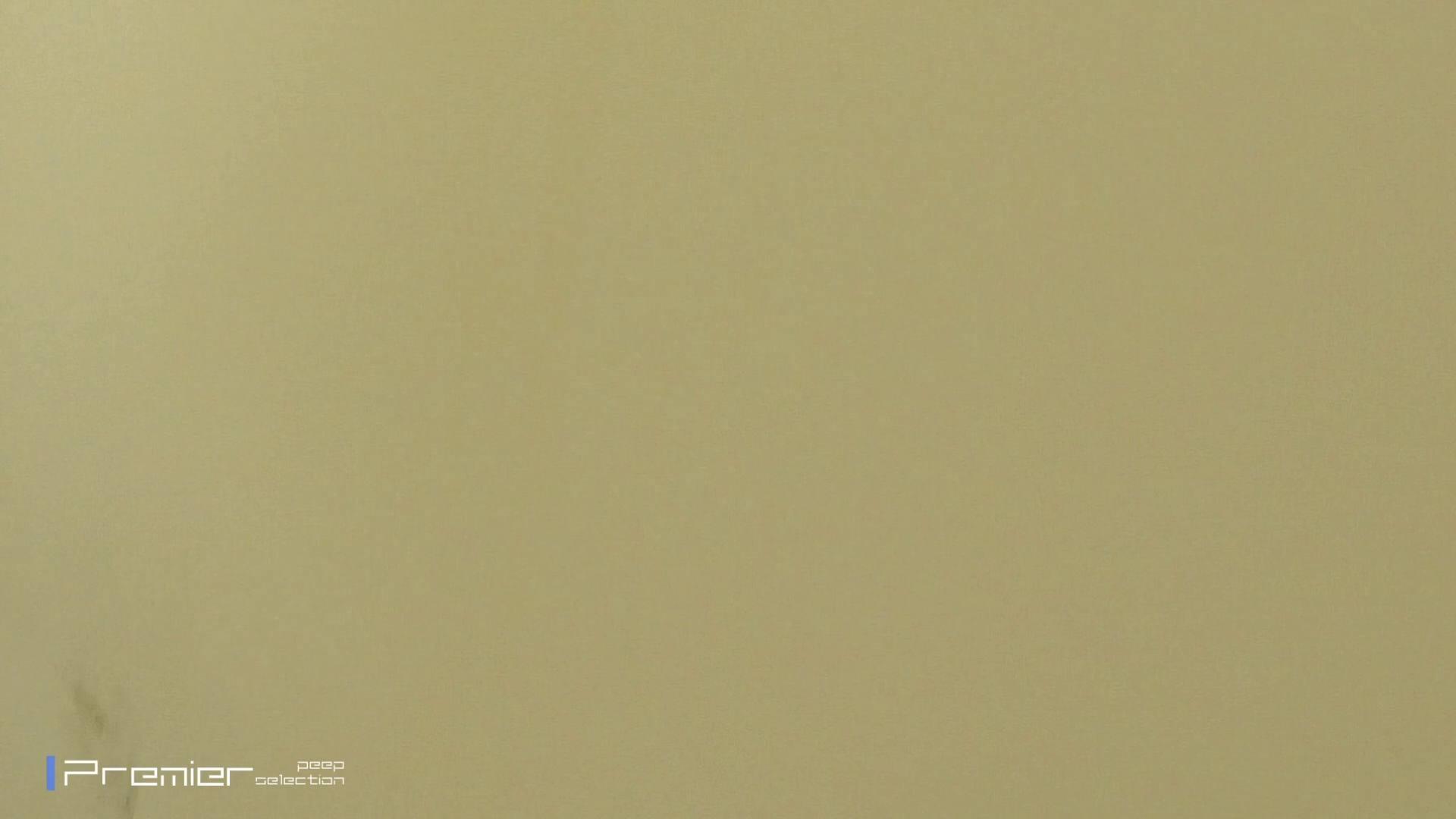 ▲2017_03位▲ 復讐のトイレ盗撮 Vol.01 盗撮エロすぎ | トイレ中  58連発 51