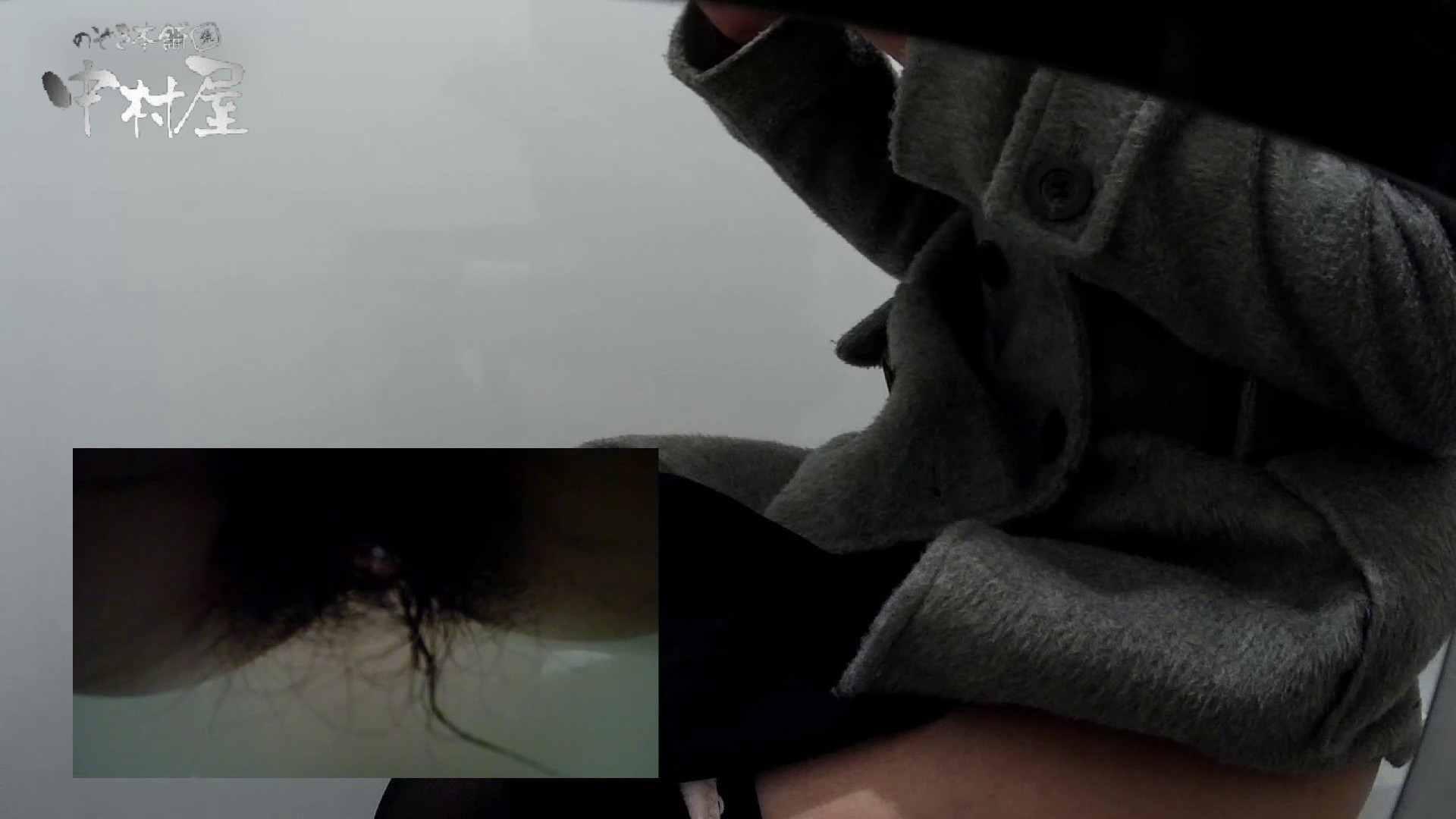 盗撮おまんこ|有名大学女性洗面所 vol.58 アンダーヘアーも冬支度?|のぞき本舗 中村屋