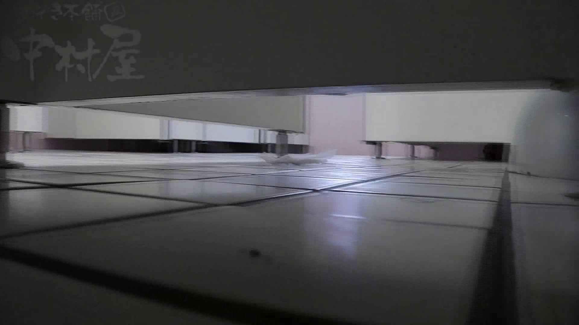 盗撮おまんこ|美しい日本の未来 No.23 倉科カナ似です|のぞき本舗 中村屋
