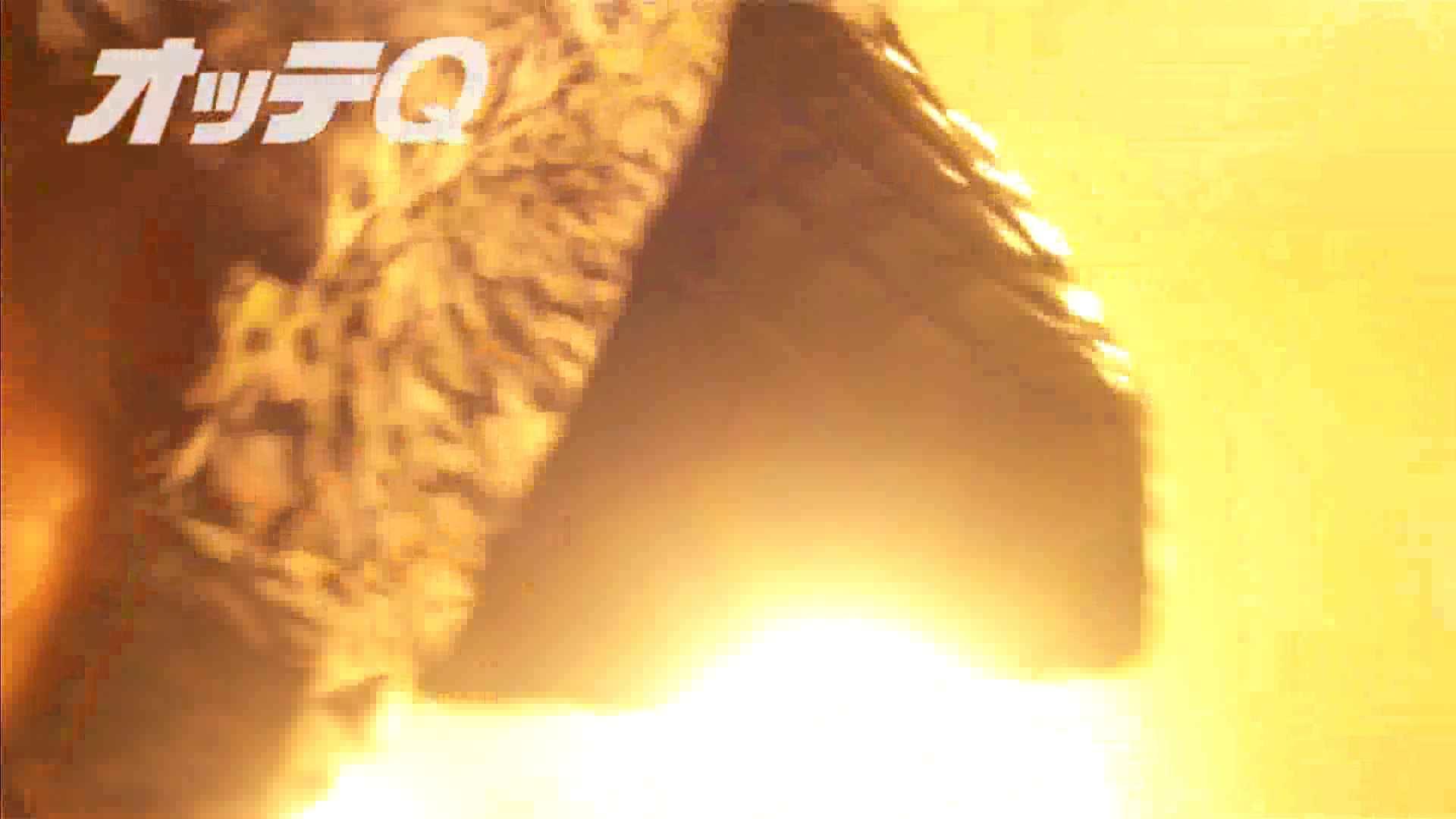 ハイビジョンパンチラ オッテQさんの追跡パンチラデパート編VOL.04 パンツ | ギャル・コレクション  42連発 40