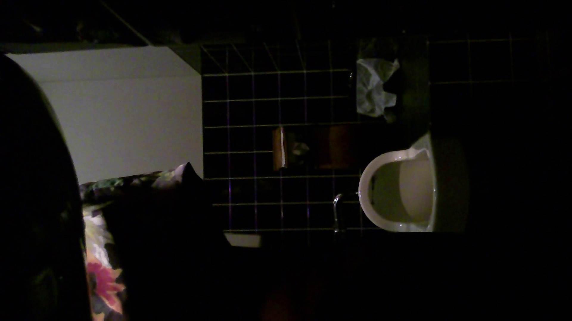 盗撮おまんこ|美女の集まる飲み屋洗面所 vol.04|ピープフォックス(盗撮狐)